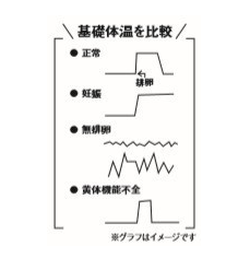 基礎体温比較図